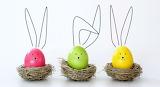Easter 213