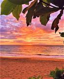 Private Maui Beach