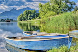 Rowing boats, lake, nature, relax