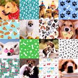 Dog Collage 3