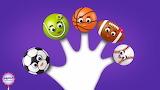 The Finger Family Sports Balls