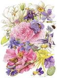 Composizine floreale