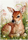 Spring Fawn ~ Debbie Cook