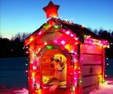 ChristmasDoghouse