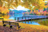 Autumn Bench at the Lake