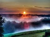 paysage de brume