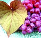AutumnGrapes