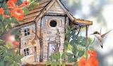 Puzzle shack bird
