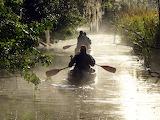 Canoe Everglades