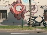Ljubljana Grafitti