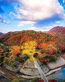 Nice autumn oasis