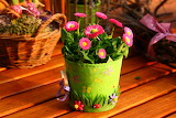 ☺♥ Spring gift...