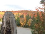 Fall Colours, Algonquin Park