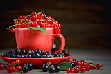 ^ Currant Berry Cup Saucer