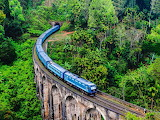 Blue train Asia