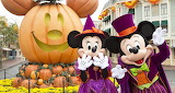 Halloween Fun At Disney