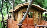 #WMP Modern Treehouse