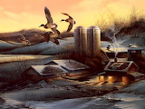 evening company-terry redlin