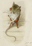 Beatrix Potter, The Bespectacled Mouse