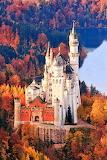 #Neuschwanstein Castle Germany in Autumn