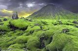 Nature Reclaims Icelandic Lava Field