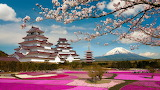 Spring at the Aizuwakamatsu Castle Japan