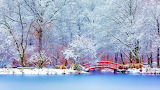 Lake, red, bridge, park, forest, trees, snow, winter, landscape