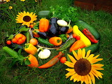 Яркий урожай