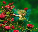 ☺♥ Fairy...