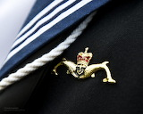 Royal Navy Submariner's 'Dolphins' Badge by Defence Images