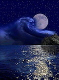 The moon and the sea🌕🌊🌕