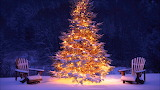 Merry Christmas - Bon Nadal