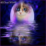 DezizWorld's Raena moon reflection