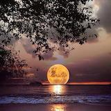 A sinking moon.