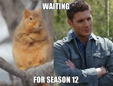Supernatural  waiting for Season 12