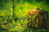Filled Backpack In Forest