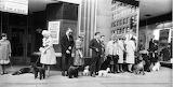 Poodle Party 1961