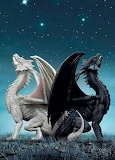 black and white dragons