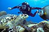 Where-to-go-scuba-diving-in-Cancun-Aquaworld-has-the-answer