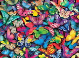 Butterflies - Loads of them