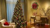 Luxury Christmas
