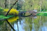 Wiosna w Lazienkach  -foto-K.S.-Altro
