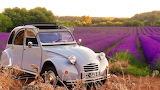 La Provence en 2CV ou véhicule vintage en Luberon