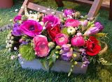 150 Flors -Flowers