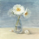 Daisies-and-shells