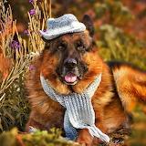 Cool Fall Fashion...