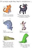 Animals Resolutions