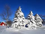 Snow Scene Contrast Martin North Dakota USA