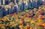 Fall Weekend Getaway (5)