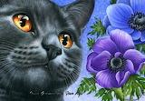 Irina Garmashowa, Cat and anemons